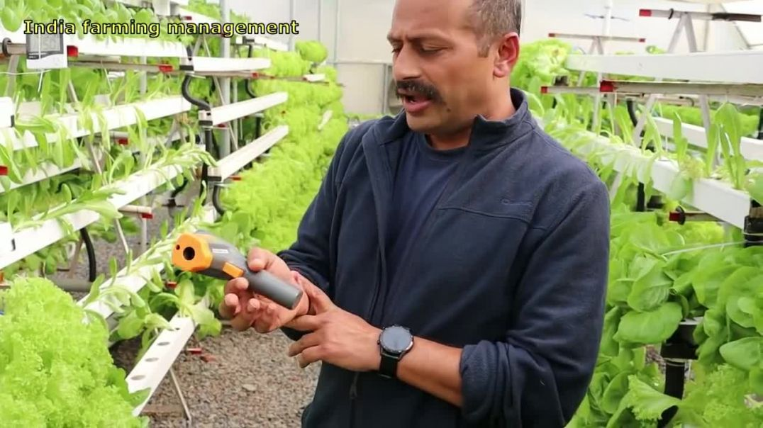 Hydroponic vegetable farming in India-Complete information about hydroponic system(Hindi)