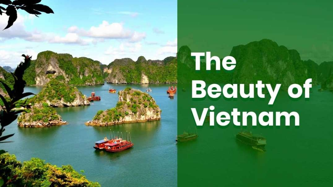 The Beauty of Vietnam