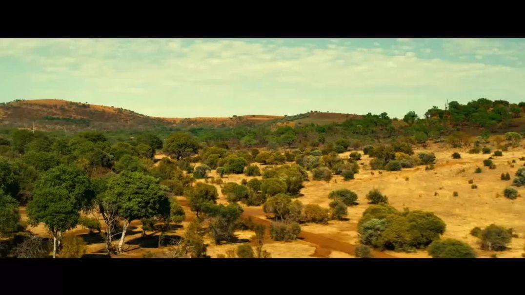 ROGUE (2020)  En ESPAÑOL  MEGAN FOX, Acción, Película